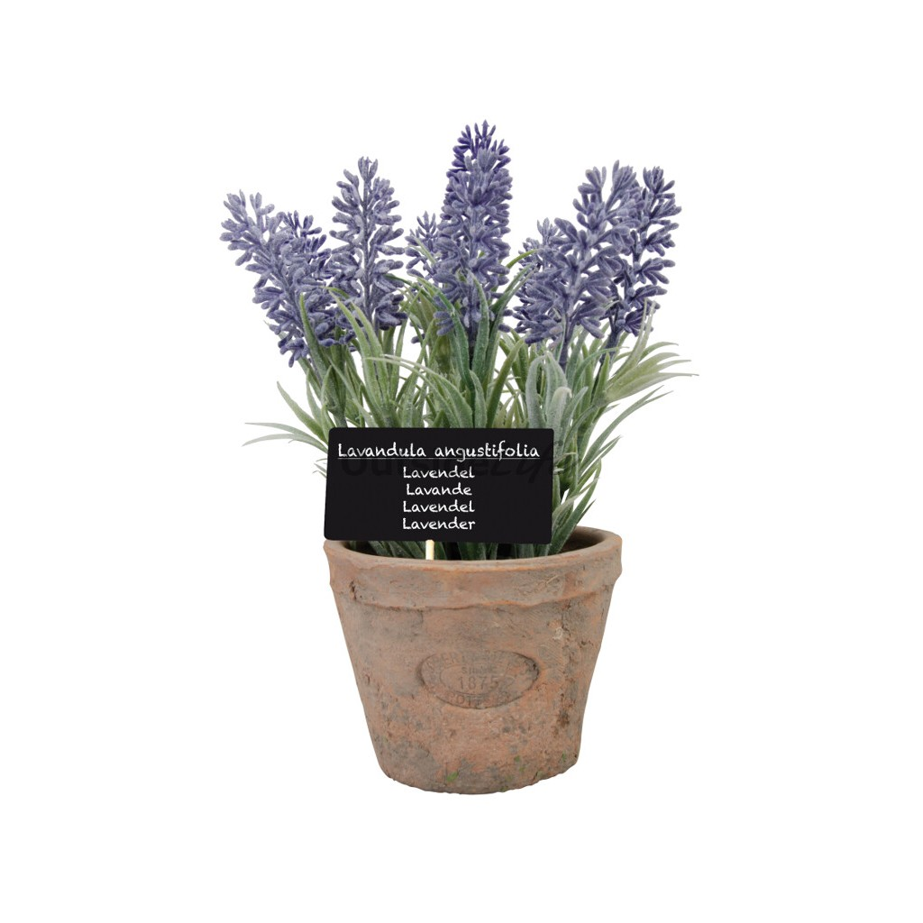 Lavendel in AT pot L (Esschert Design - AH010 - 8714982086953) 1